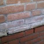 Witte uitslag stenen verwijderen