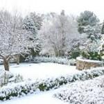 tuin winter klaar maken